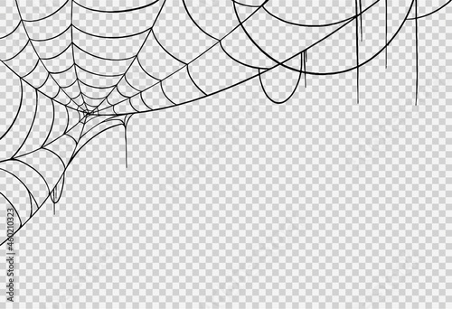 Fotografie, Obraz Halloween party background with spiderwebs isolated png or transparent texture,b