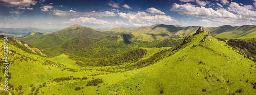 Fotografia, Obraz Panoramic aerial view of the mountains and a green pasture where a small herd of