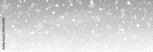 Fotografie, Obraz Vector snow