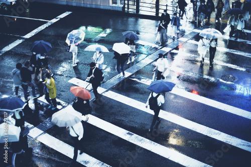 Photo 雨の日の横断歩道を渡る人々