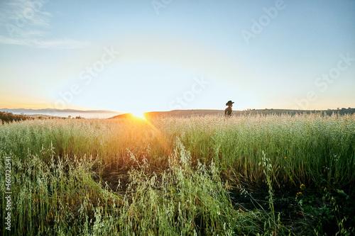Vaquero pensando en monte viendo paisaje de amanecer lejos de la ciudad