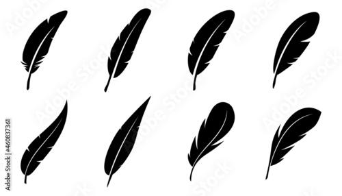 Fotografie, Tablou Set of Bird Feather