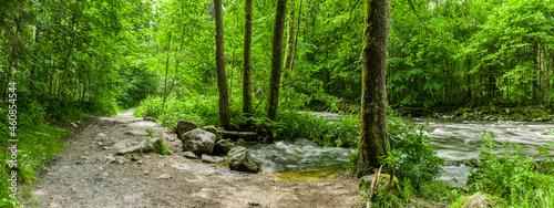 Foto Wanderweg an der Buchberger Leite im Bayersichen Wald
