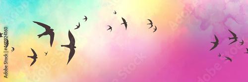 Canvastavla Black bird silhouettes on sunset sky background, birds sketch in black outlines