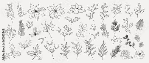 Foto Minimal botanical hand drawing design for logo and wedding invitation