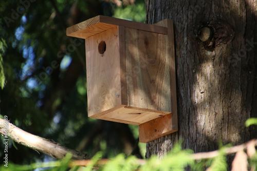 Fotografering A new cedar birdhouse