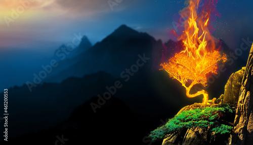 Fotografie, Obraz Burning bush on top of a mountain biblical story concept