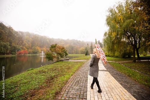 Fotografering alleyway in foggy park. Autumn, rainy weather