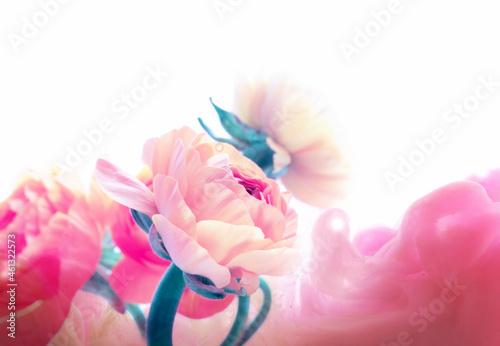 Billede på lærred Pink color anemone flower bouquet on light horizontal background