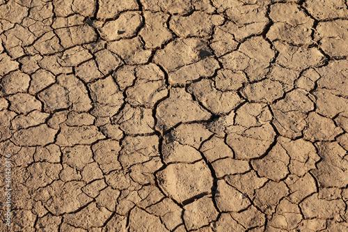 Cracks of the dried soil in arid season Fototapet