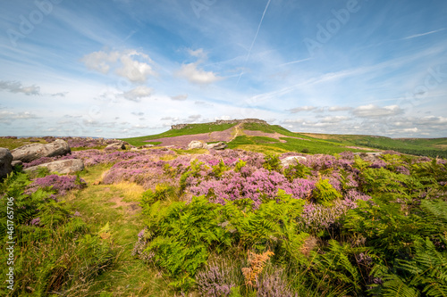 Obraz na plátně Summer time moorland view with bracken and heather in full bloom rocks and hills