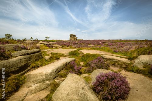 Fototapeta Summer time moorland view with bracken and heather in full bloom rocks and hills