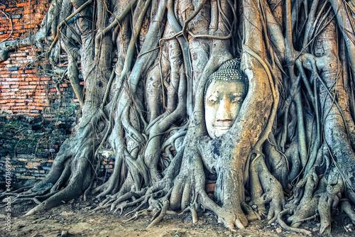Fototapeta Buddha head in Wat Mahathat temple, Ayutthaya
