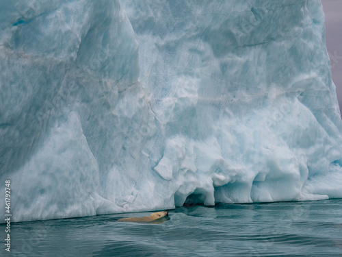 photos of mountains, sea ice, glaciers and oceans from the Canadian arctic Fototapet