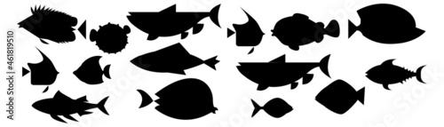 Fotografie, Obraz Fish icon. Fish icon vector isolated