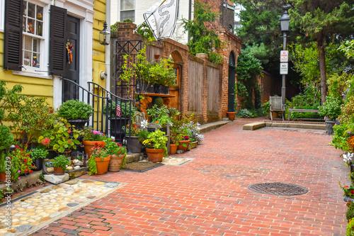 Billede på lærred Alexandria, Virginia, USA - October 8, 2021: Fall Garden in an Alleyway Off Roya