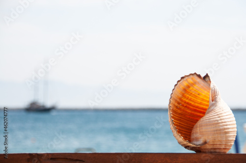 Canvastavla shell with boat