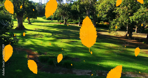 Digital composition of multiple autumn leaves icons falling against aerial view of the park