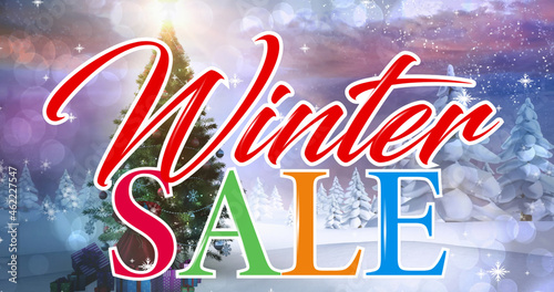 Image of winter sale text over fir trees in winter landscape