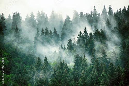 Fototapeta Misty mountain landscape