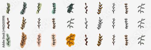 Obraz na plátně Tree branch icons set