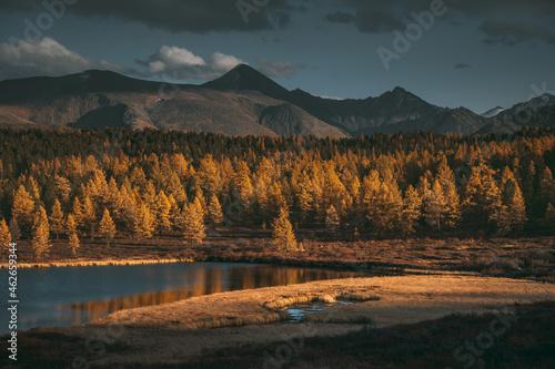 Beautiful lake in the yellow larch forest. Fall season.