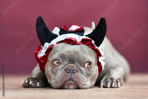 Canvastavla French Bulldog dog wearing red devil horn headband with ribbon in front of red b