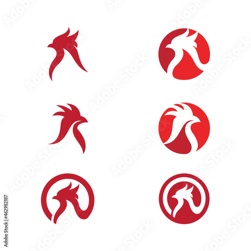 Photo chicken icon vector illustration design
