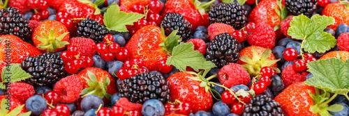 Fotografia Berries fruits berry fruit strawberries strawberry blueberries blueberry panoram