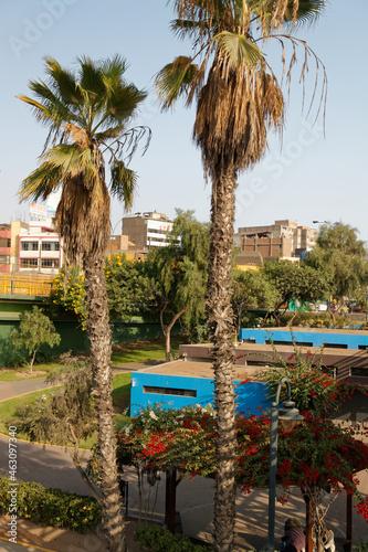 Fototapeta Parco de la Muralla tuż za historycznym centrum w Limy, stolicy Peru
