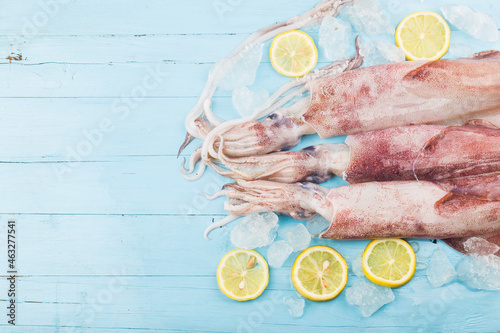 Canvas fresh octopus or squids raw on wooden board with ingredients
