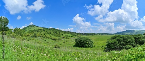 Fotografie, Obraz 青空バックに見る夏の八島ヶ原湿原のパノラマ情景@長野