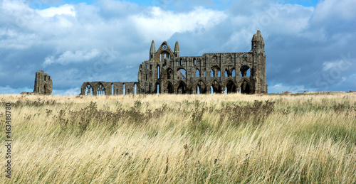 Photo Whitby Abbey in ruins alone on the grassy hillside