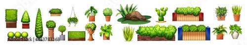 Fotografie, Obraz Potted plants in the garden
