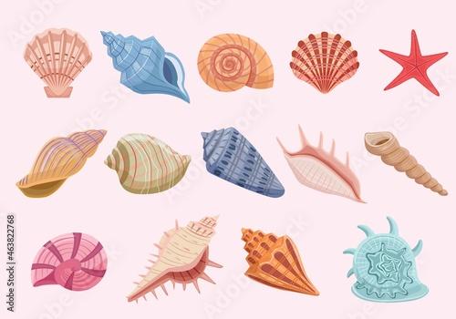 Obraz na plátně Ocean shells set