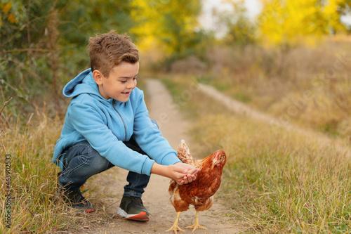 Farm animal. Cute little boy feeding chicken in countryside, space for text