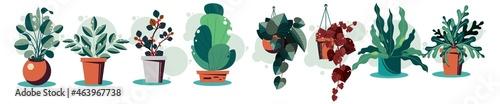 Fotografie, Obraz Houseplants flowerpots isolated icons vector illustration