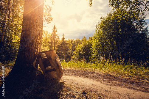 Foto Backpack on the forest trail