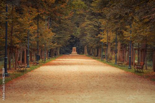 Aleja w parku jesienią
