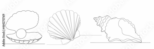 Fotografia seashells continuous line drawing vector, isolated