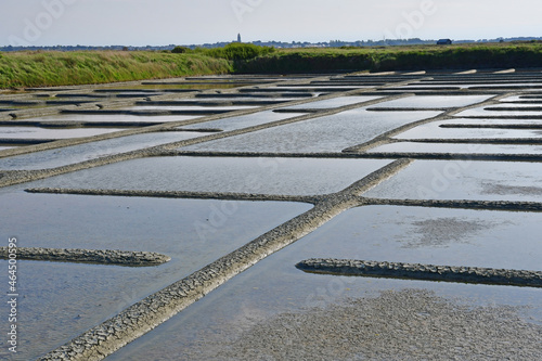 Obraz na plátně Guerande, France - april 14 2017 : salt marshes