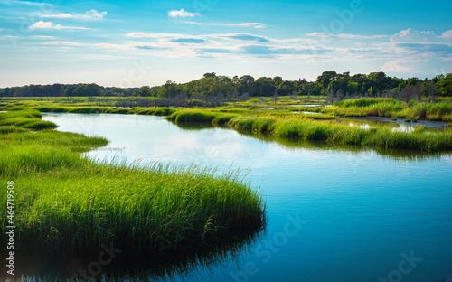 Obraz na plátně Curving river and green marshland on Cape Cod at high tide