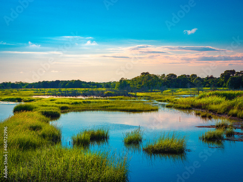 Fototapeta Cape Cod marshland seascape with circularly scattered little islands of wild plants